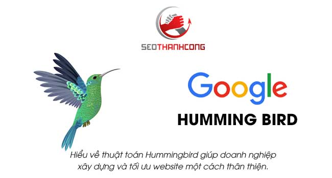 Hiểu về thuật toán Hummingbird giúp doanh nghiệp xây dựng và tối ưu hóa trang web