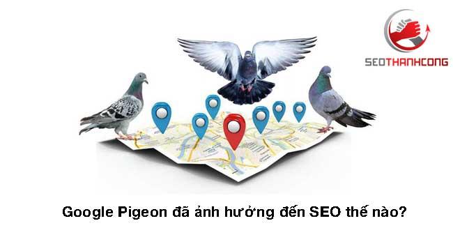 Thuật toán Google Pigeon đã ảnh hưởng đến SEO thế nào?